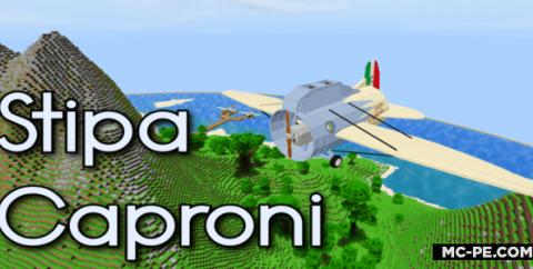 Необычный самолет из Италии [1.16] (Stipa Caproni)