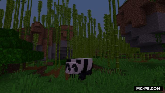 Cид с пандами, бамбуковым лесом и джунглями [1.16] [1.15] [1.14]